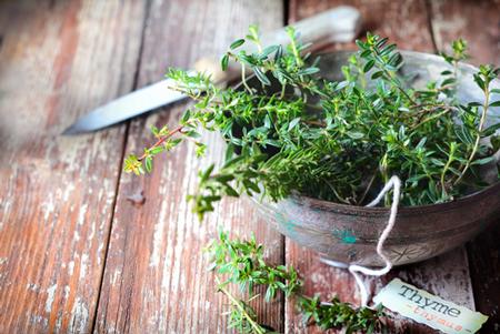 【らくらく風水】節約ベタは、キッチンの真ん中に観葉植物を置こう!