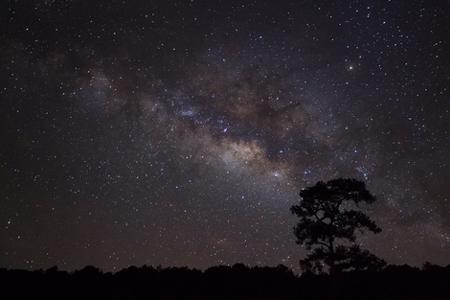 6月27日は蟹座の新月 幸運の星・木星の恩恵と、深い愛情を感じられる日