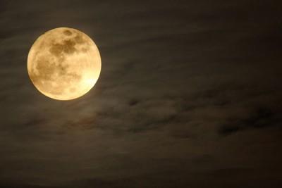 11月7日は牡牛座の満月 頑固さを手放して豊かな富を引き寄せよう!
