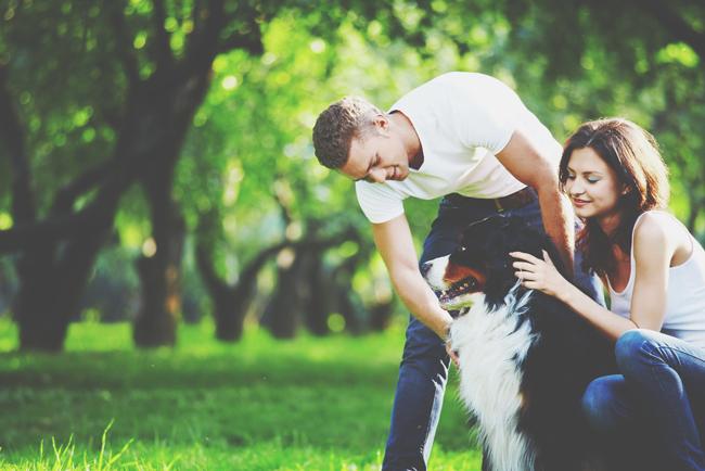 【心理テスト】好きな相手の犬の散歩のしかたでわかる、あなたのSM度