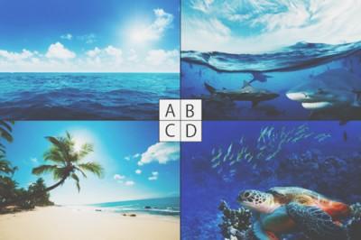 【心理テスト】夏の海のイメージわかる冒険心