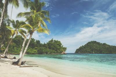 【心理テスト】無人島に持って行くものでわかる、人生で大切にしたいこと