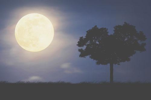 11月26日は双子座の満月 重苦しさを手放して、軽やかな思考を手に入れよう!