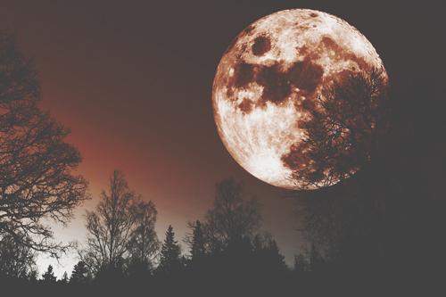 12月25日は今年最後の満月 蟹座満月の力で、居心地のいい環境をつくろう!