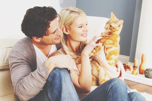 2月22日は「猫の日」にちなんだ、12星座別・猫に見習う、彼をメロメロにする方法