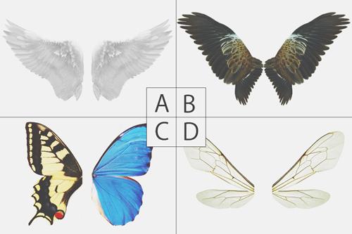 【心理テスト】羽を持てるとしたらどれ? 選んだ羽でわかる目立ちたい願望