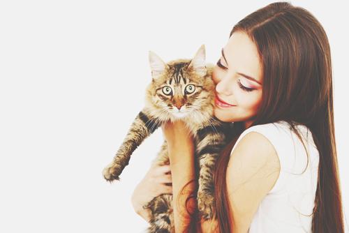 【心理テスト】猫をかわいがった時の反応は? 答えでわかる転職のタイミング