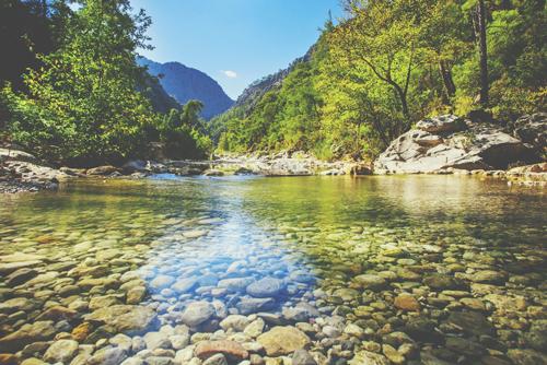 【心理テスト】川から流れてきたものは何? 答えでわかる人生で大切なもの