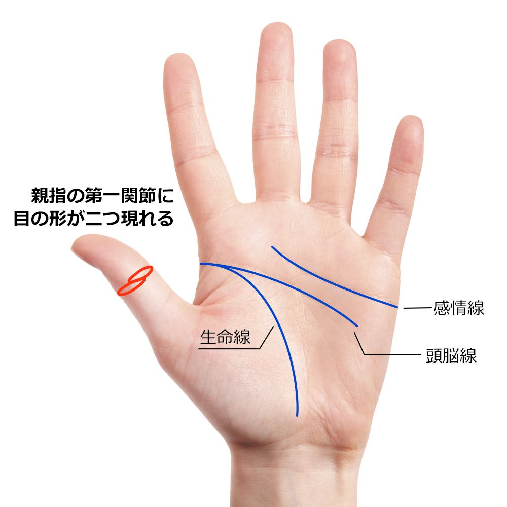 親指の第一関節に目の形が二つ現れる相