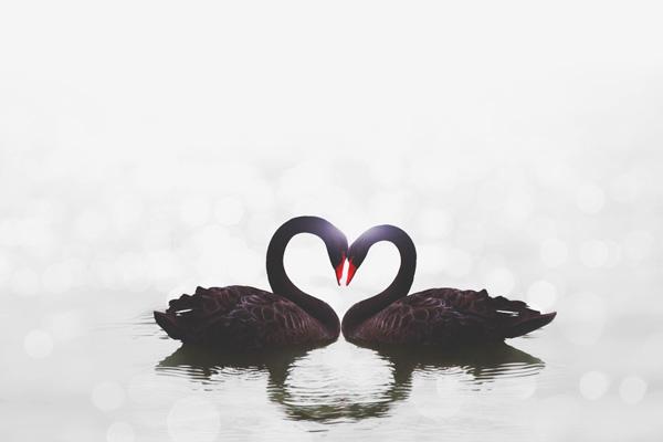 【お悩み相談室】「運命の人と出会えない」方必見! 恋のチャンスを広げるコツ
