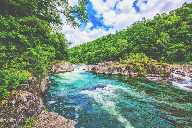 【心理テスト】橋のない川、どうやって向こう岸に行く? 答えでわかる危機回避能力