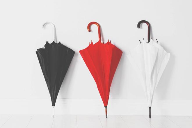12星座ありなし調査【傘を持っていく編】牡牛座は天気予報よりも自分のカンを信じる!