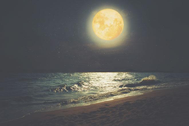 8月15日は水瓶座の満月 あまのじゃくを手放して、楽しいネットワークを手に入れよう!