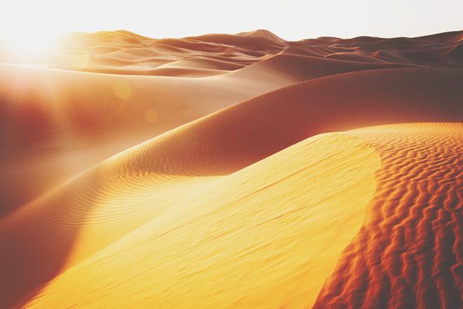 【5月の開運壁紙】恋愛運は「砂漠」、金運は「猛獣」の画像で運気アップ!