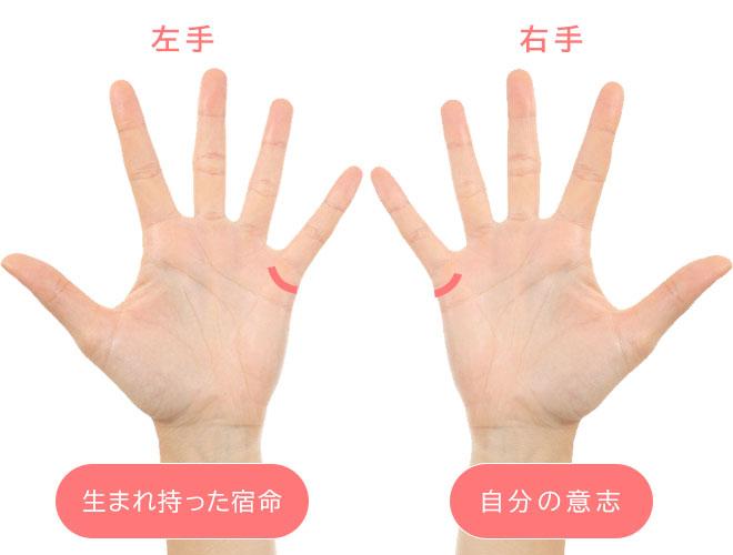 両手&結婚線02